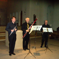 Trio Aventure beim Benefizkonzert 2014 in der Dreifaltigkeitskirche. Foto: Strickroth